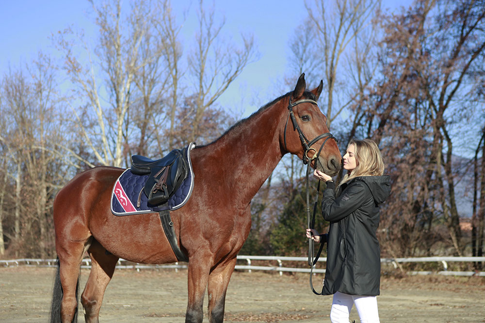 Horse riding: Christmas gifts with Animo