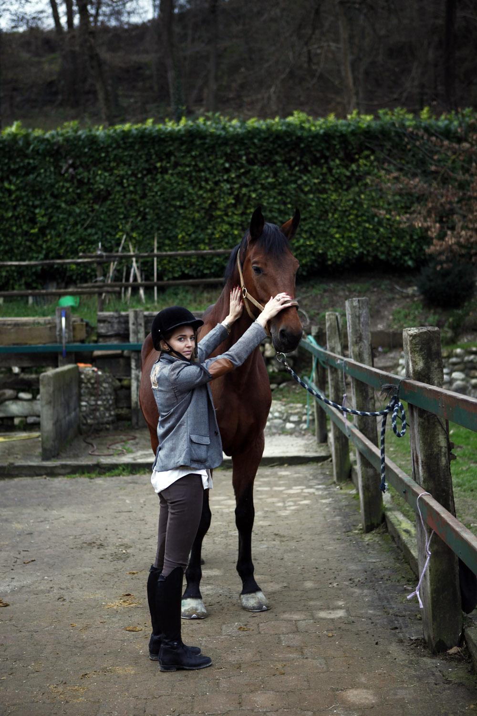 cura del cavallo