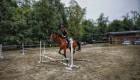 Stivali equitazione per la monta all'inglese