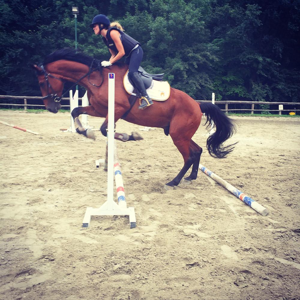 salto ostacoli equitazione