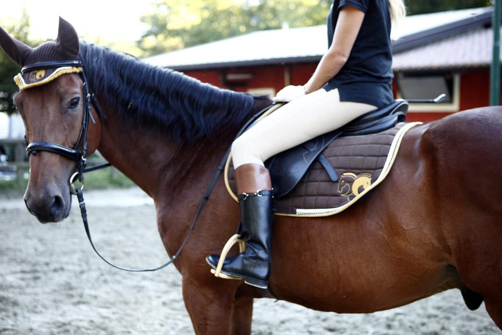 stivale per l'equitazione bicolor monta inglese