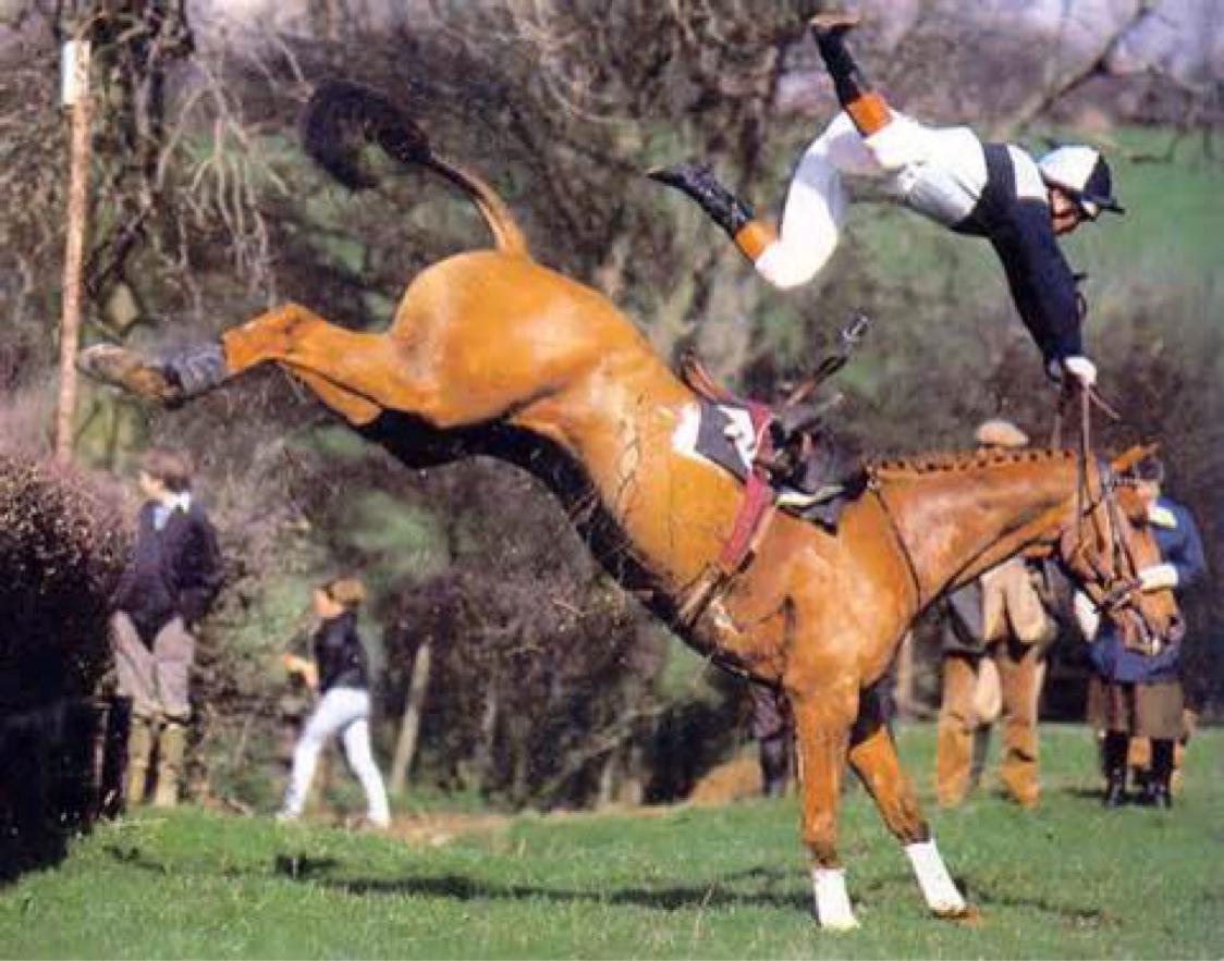 Cadute da cavallo for Immagini cavalli da disegnare