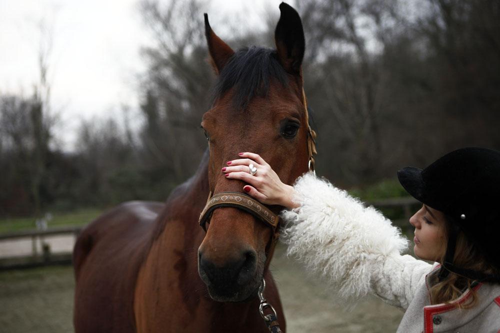 Come fidarsi del proprio Cavallo