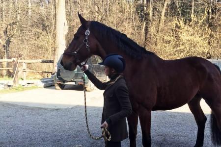 come vestirsi per andare a cavallo