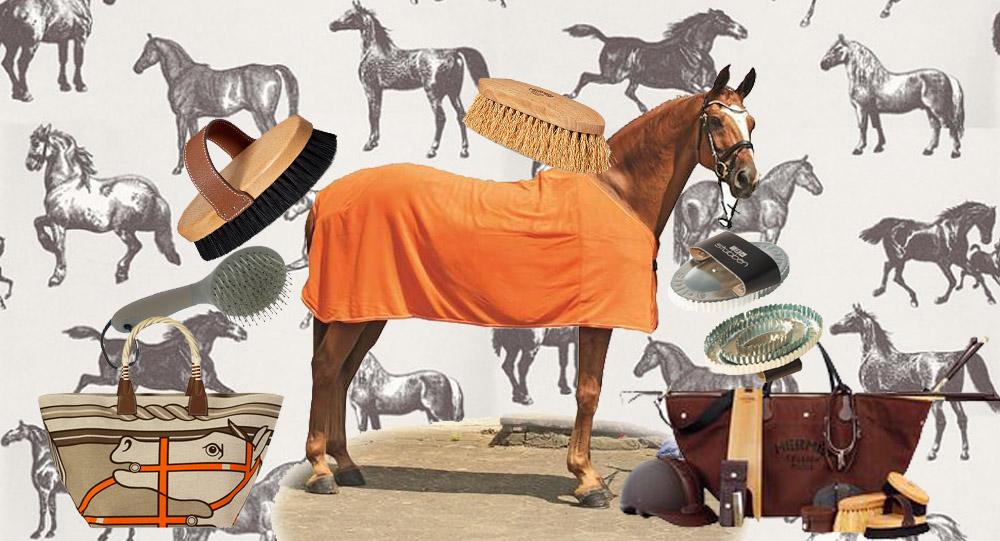 Equitazione: Spazzole per cavalli