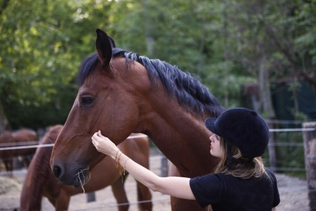 consigli per la pulizia del cavalo