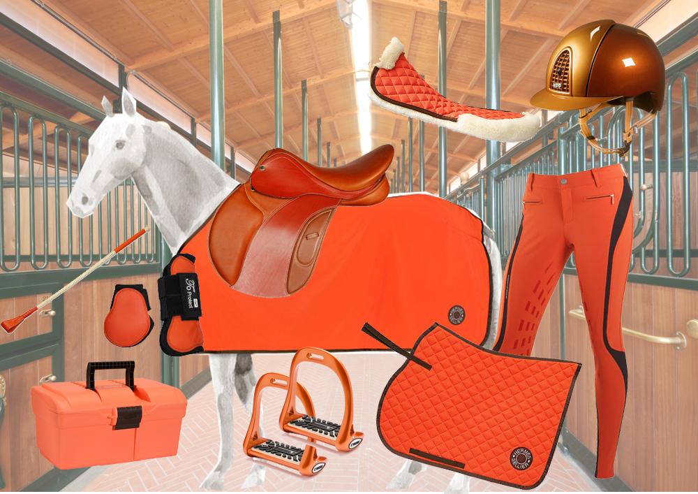 Accessori per l'Equitazione