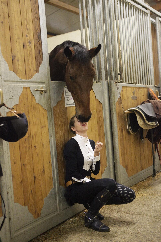 coccole con il cavallo