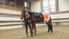 Saut Hermes 2017: Edwina Tops-Alexander al primo posto