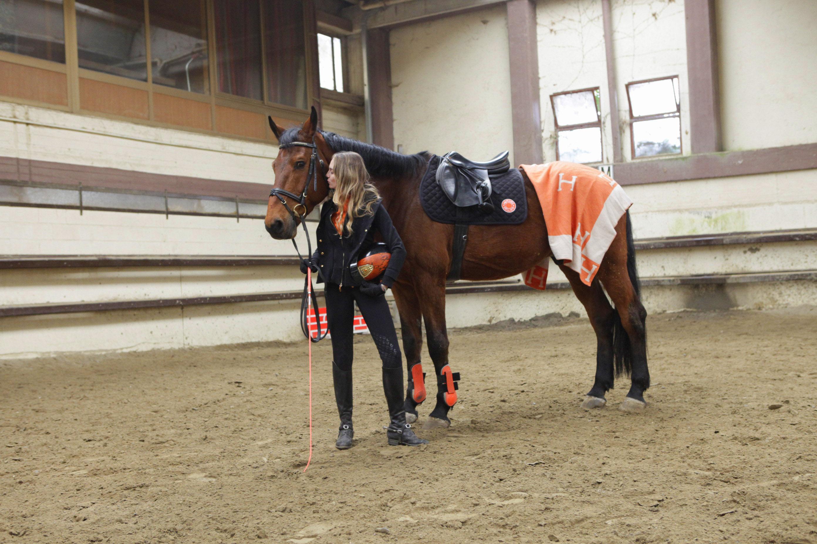 hermes equestrian horse look
