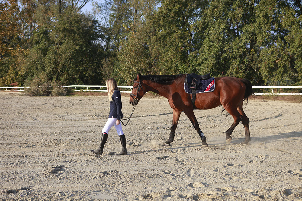 Equestrian blog