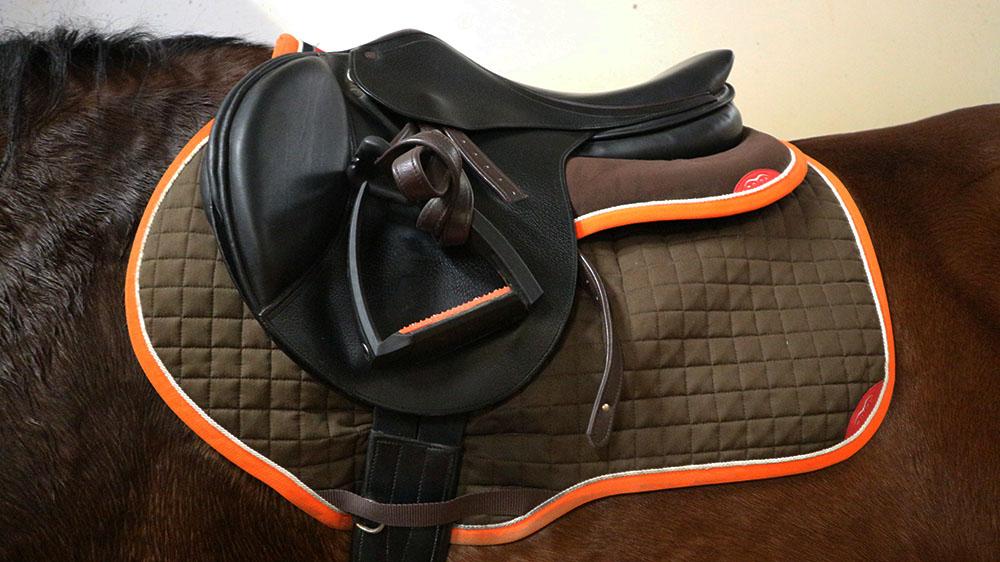 Equitazione: Sottosella Personalizzato e Wpad Animo