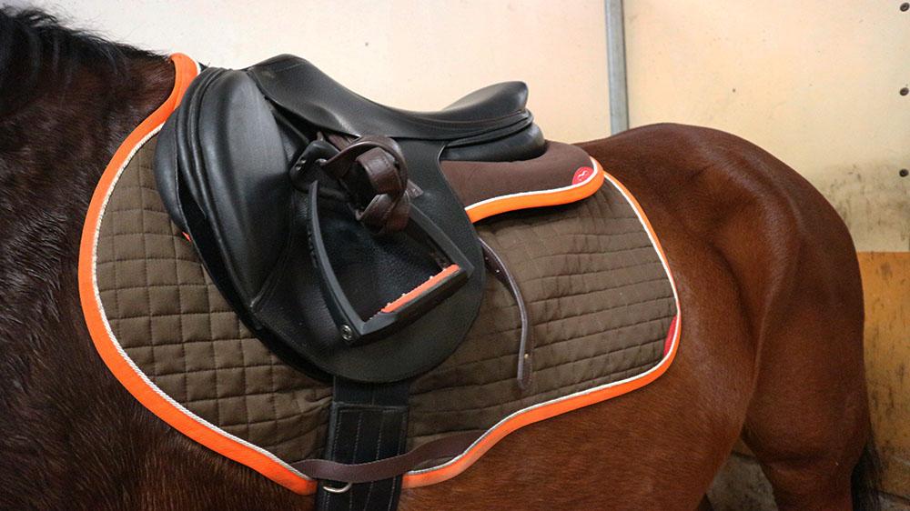 w pad personalizzato equitazione animo