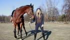 Equitazione: Idee regali di Natale con Animo