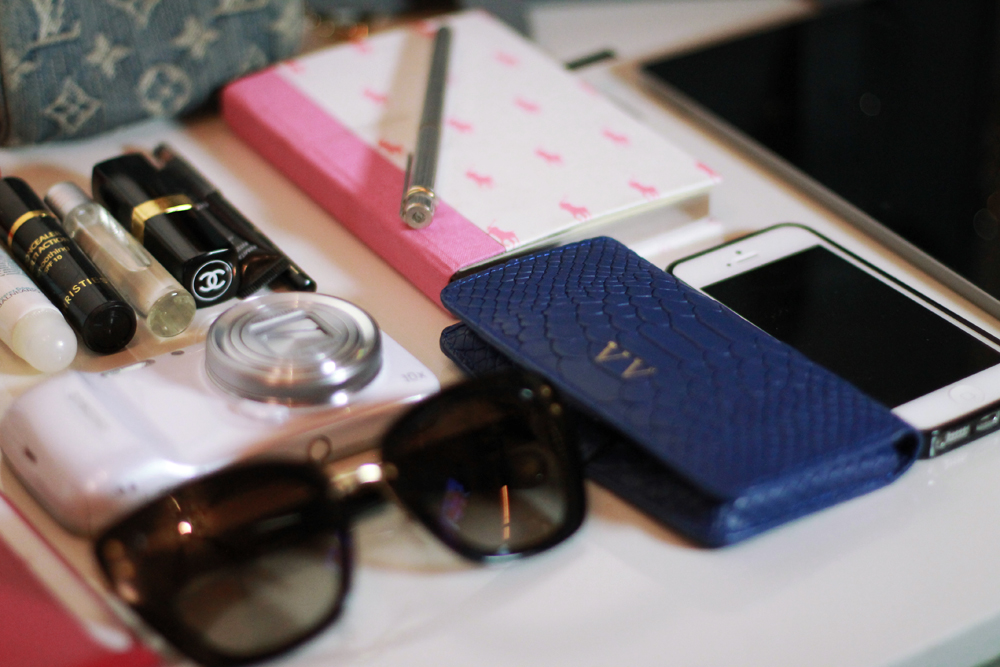 Whats in my Bag   The Ugly Truth of V