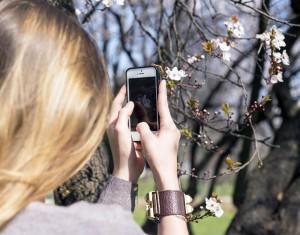 iphone spring
