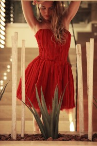 detomaso  dress
