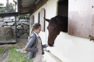 Equestrian blog The ugly truth of v
