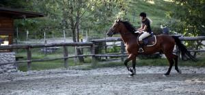 blog di equitazione
