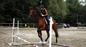equitazione blog