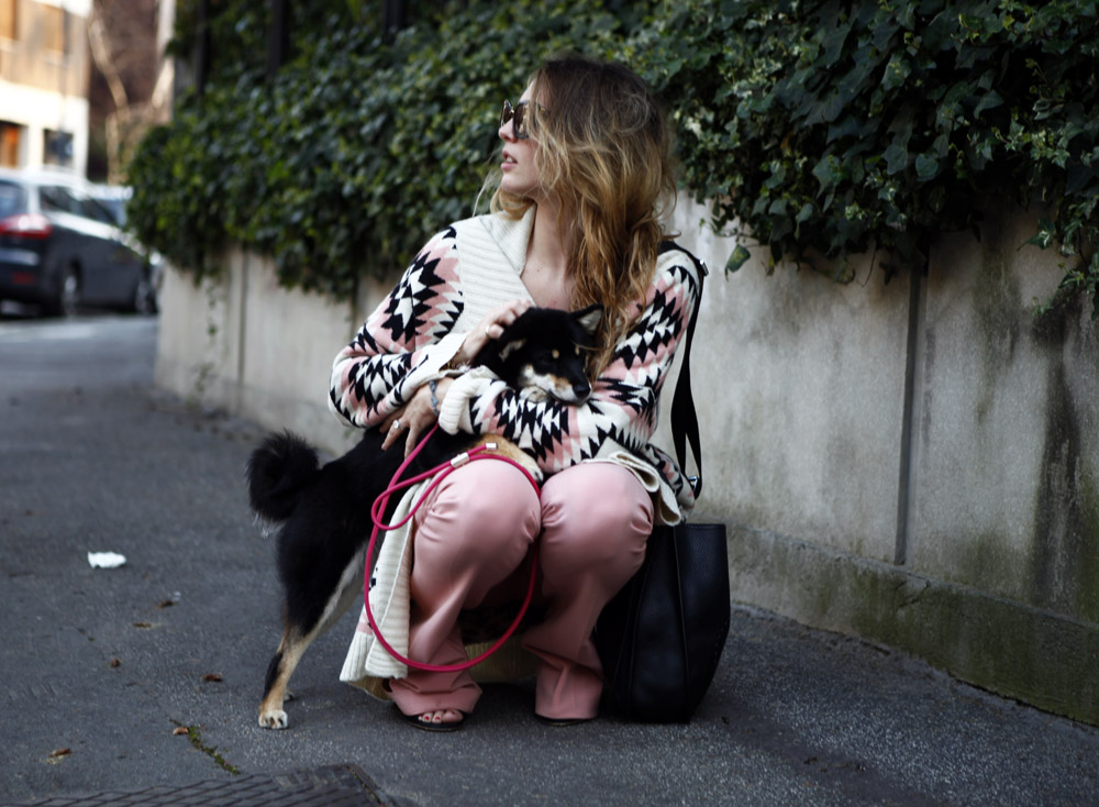 fashion shiba blogger
