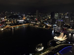 marina sands hotel view