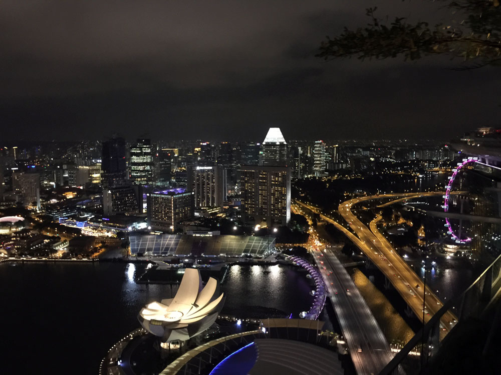 view from singapore marina sands hotel