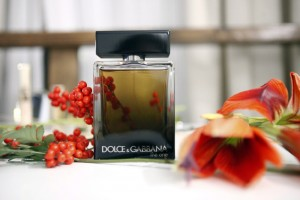 dolce gabbana the one for man
