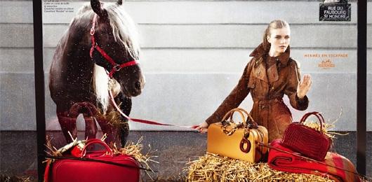 herme sla storia dai cavalli alla moda
