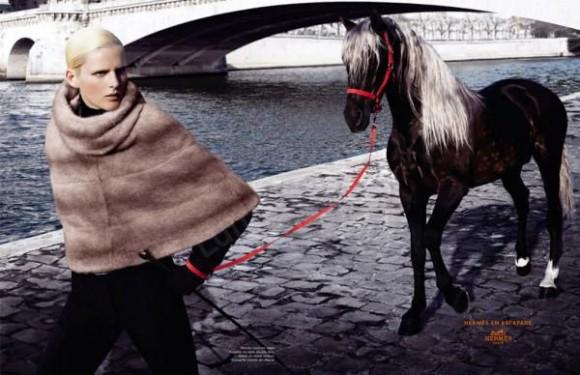 hermes cavalli moda