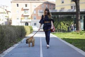 casual look with your dog