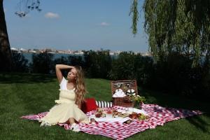 picnic n.2