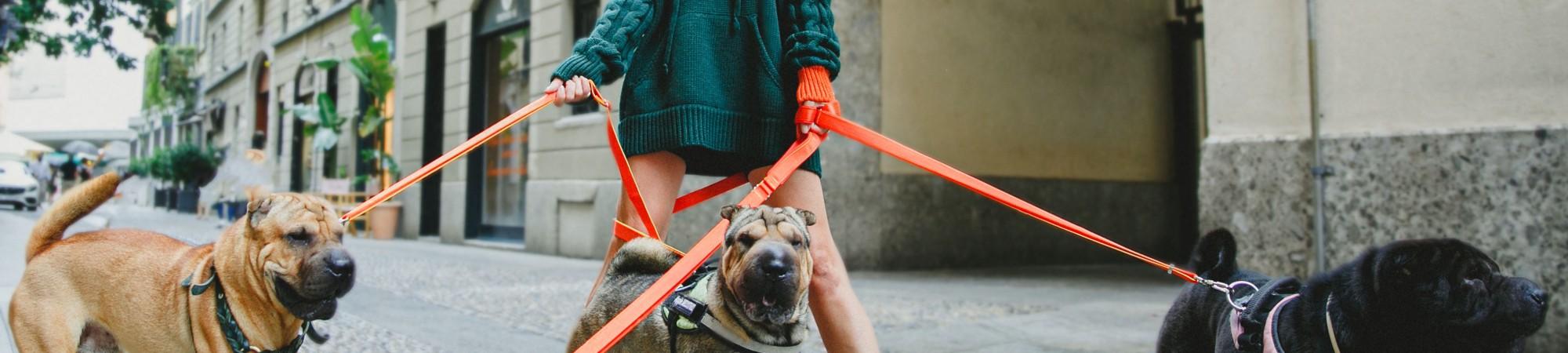 Virginia Varinelli lancia il suo marchio di moda